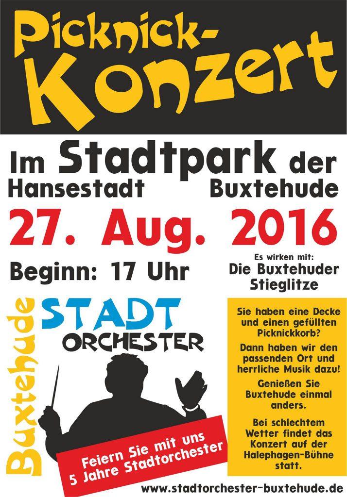 Flyer Picknick-Konzert 2016